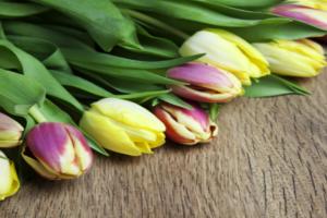 праздник 8 марта