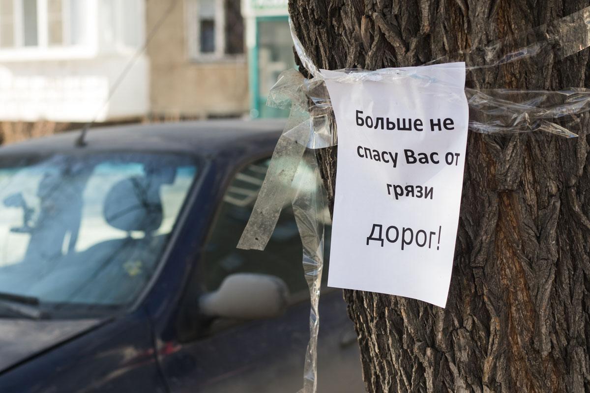 Фото Екатерины Серовой